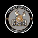 Logo équipe Dammarie